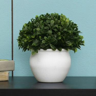 Sachi Potted Green Bean Ball Plastic Pot 15cm