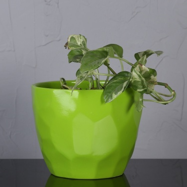 Madison Mackenzie Table Planter